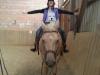 Sitzschulung für den Reiter