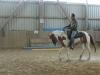 Beritt Westernpferde